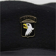 101st Airborne Division (Screaming Eagles) Pin-flags-and-patches-Mitchells Adventure