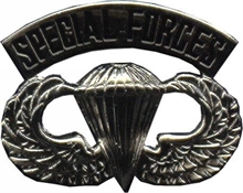 Para Wing Special Forces-flags-and-patches-Mitchells Adventure