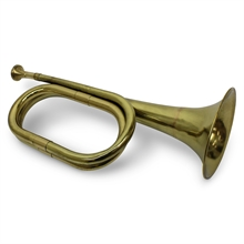 SHORT BRASS PARROT BUGLE-collectable-Mitchells Adventure