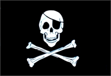 SKULL & BONES FLAG 2x3-flags-and-patches-Mitchells Adventure