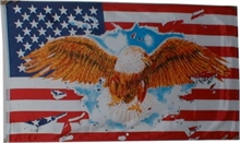 USA with EAGLE FLAG 5x3-flags-and-patches-Mitchells Adventure